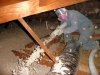 blowing in cellulose attic insulation