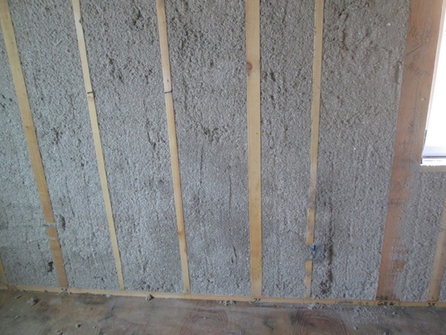 cellulose walls
